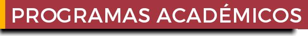 programa academico diplomado graduado postgrado