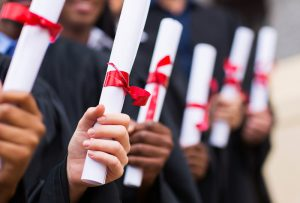 programa academico diplomado